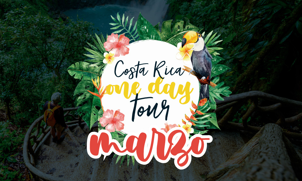 ONE DAY TOURS MARZO